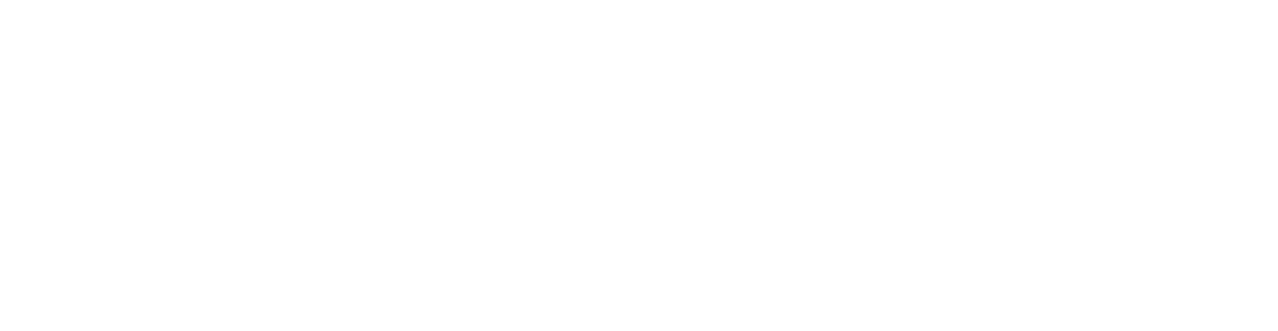 relayter_logo_title_white-01